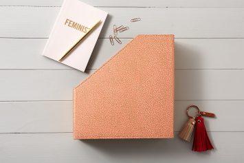 Blush pink starburst dots book and file holder